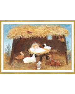 Manger Christmas Cards Boxed Set