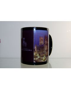 West Facade Night Mug